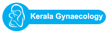 Obstetrician And Gynaecologist | Gynaecologist Doctor
